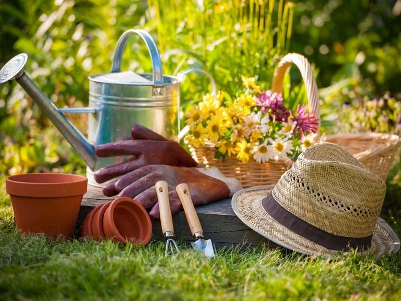 نکات مهم در باغبانی خانه و ویلا
