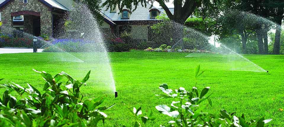 راهکارهای صرفه جویی در آبیاری باغچه